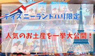 【フランス】ディズニーランドパリ限定&人気のお土産を一挙大公開!